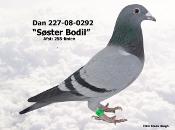 227-08-0292.JPG