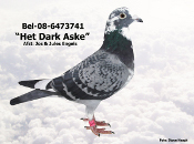 BEL-08-6373741.JPG