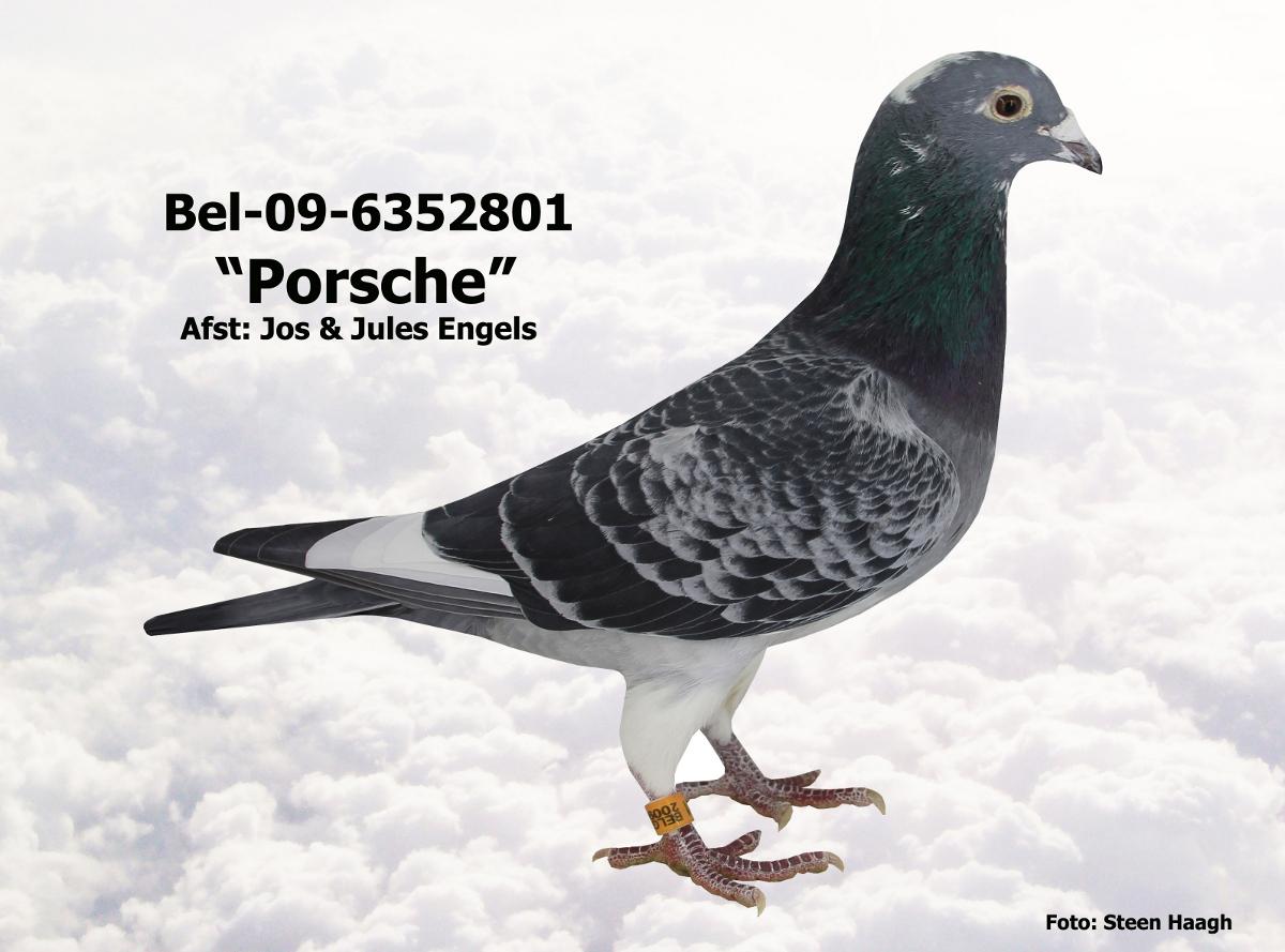 BEL-09-6352801.JPG