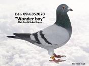 BEL-09-6352828.JPG