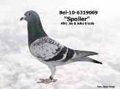 BEL-10-6319069.JPG